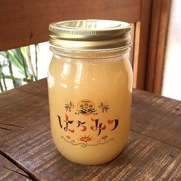 【最高蜂】国産レンゲ蜂蜜  500g