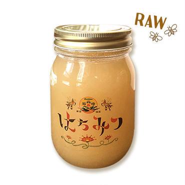 国産レンゲ蜂蜜  500g
