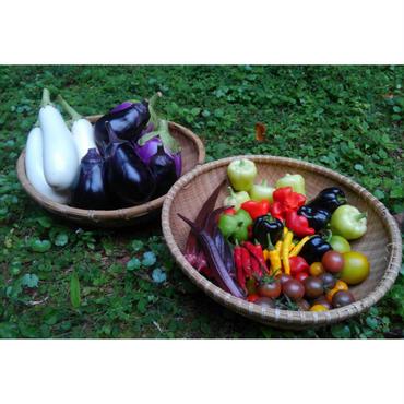 おすすめ野菜セット