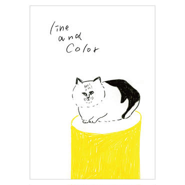 zine「line & color」