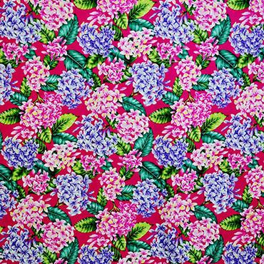 プルメリア ピンク