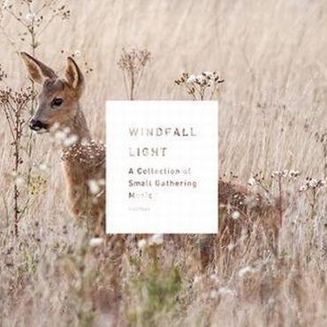 音楽CD「WINDFALL LIGHT」 Various Artists