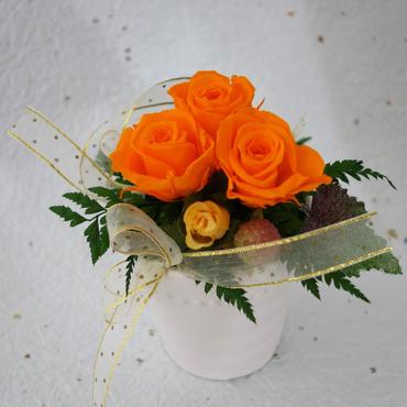 プリザーブドフラワー・オレンジの風   送料無料