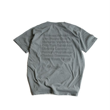 CITIES REFLECTIVE WASHED TEE  (GRAY)