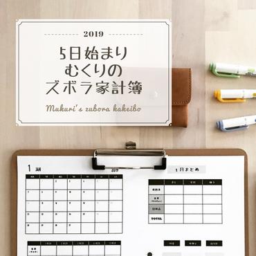 【5日始まり】むくりのズボラ家計簿2019