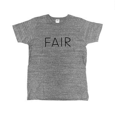 FAIR (gray)