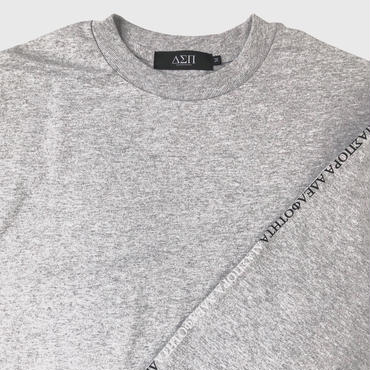 Diaspora skateboards / Long Letter L/S Tee (athletic heather)