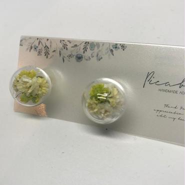 【picabuu】ピアス/ガラスドーム(かすみ草)④