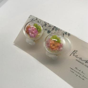 【picabuu】イヤリング/ガラスドーム(かすみ草)①