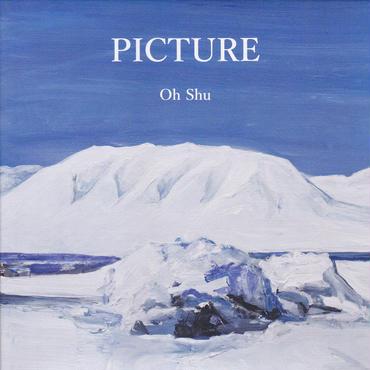 王舟 / PICTURE / CD