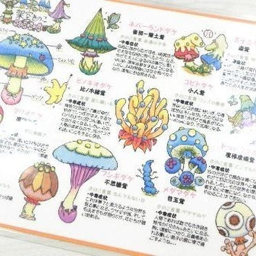 【PoPun.P】 ミニ下敷  S48-0186