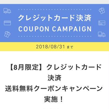 8月限定クレジットカード決算送料無料