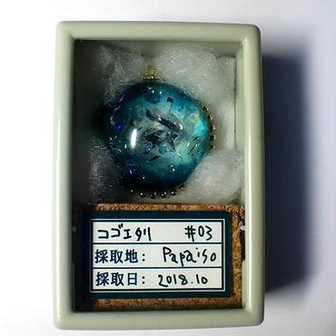 【標本シリーズ02】「コゴエタリ」
