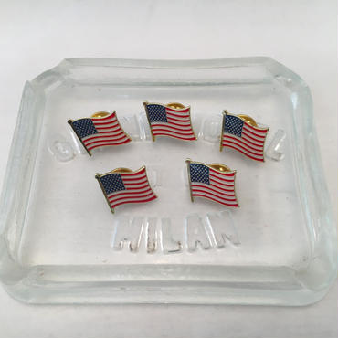 US FLAG PINS(OLD&NEW)