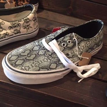 VANS Authentic(Sneke)