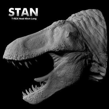 Tyrannosaurus Rex Kit【取り寄せ】