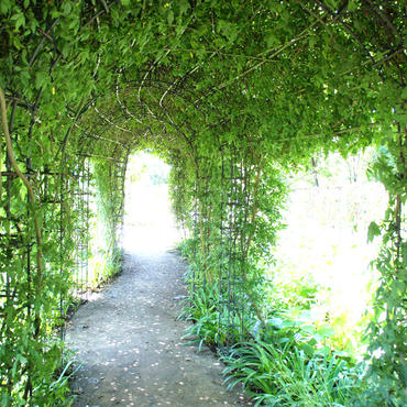 天使の回廊
