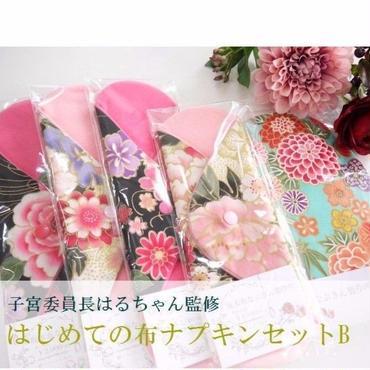 【はじめての布ナプキンセットB】坂本布なぷきん製作所