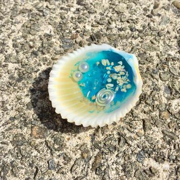 貝のオルゴナイトSA