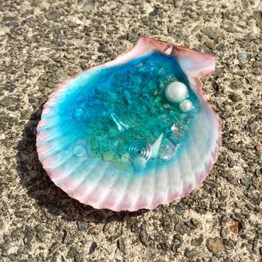 貝のオルゴナイトL