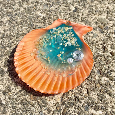 貝のオルゴナイトM