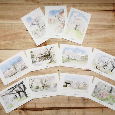 下野国さの百景 絵葉書「桜・梅・かたくりシリーズ」