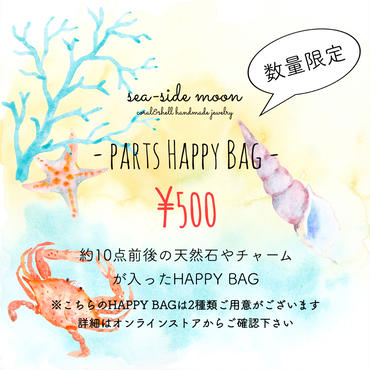 PARTS HAPPY BAG 2017