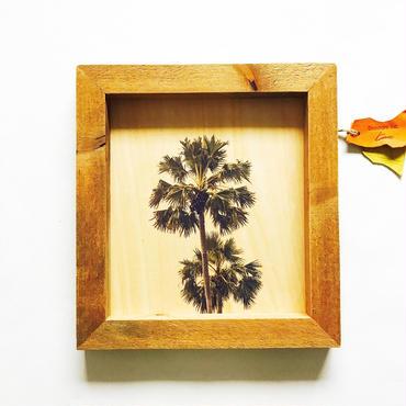 wood board [palm]