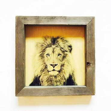 vintage wood board  [LION]
