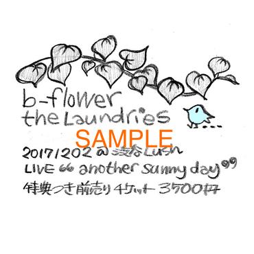 b-flower・the Laundries 1202ライブ・特典付前売り券ダウンロード版(スマホをお持ちでない方専用)