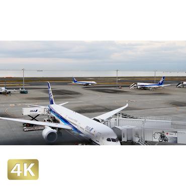 1028047 ■ 東京 羽田空港