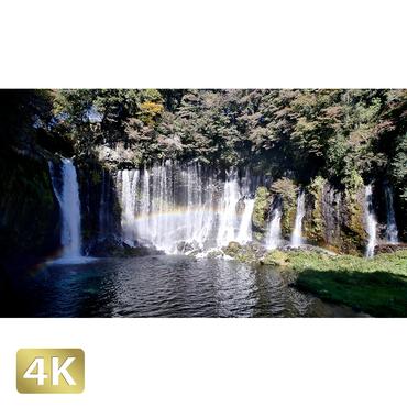 1015034 ■ 静岡 白糸の滝
