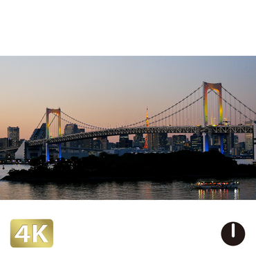1028039 ■ 東京 レインボーブリッジ