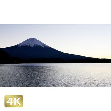 1018002 ■ 富士山 田貫湖