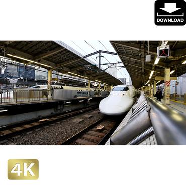 20280064 ■ 東京 東京駅新幹線