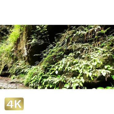 1037058 ■ 御岳山 七代の滝