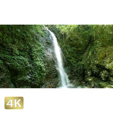 1005004 ■ 秋川渓谷 払沢の滝