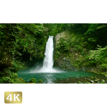 1010022 ■ 静岡 浄蓮の滝