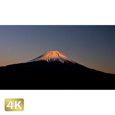 1018059 ■ 富士山 朝霧高原