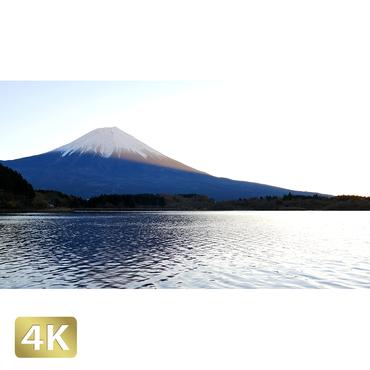1018004 ■ 富士山 田貫湖