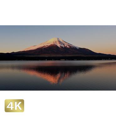 1018073 ■ 富士山 山中湖