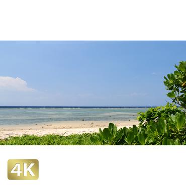 1023033 ■ 西表島 南風見田の浜
