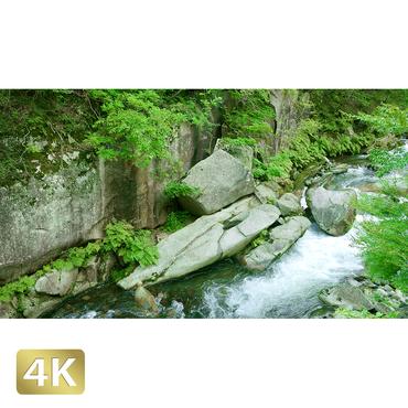 1011009 ■ 昇仙峡 渓流