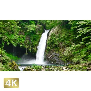 1010024 ■ 静岡 浄蓮の滝