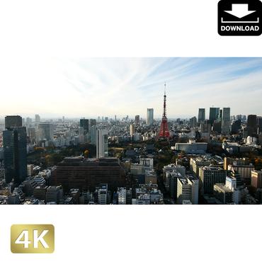 2028074 ■ 東京 東京タワー