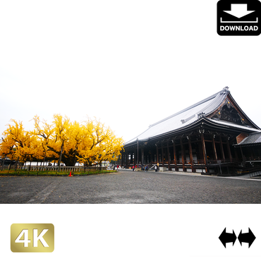 2043078 ■ 京都 西本願寺