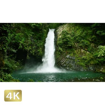 1010023 ■ 静岡 浄蓮の滝