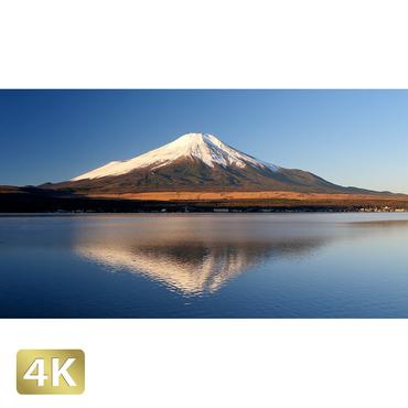 1018074 ■ 富士山 山中湖