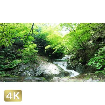 1010006 ■ 西沢渓谷 三重の滝