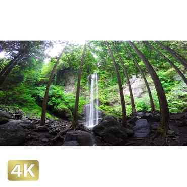 1010027 ■ 静岡 夕日の滝
